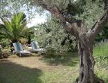 Côté jardin détente de la Villa Rosaland à St Raphael Var